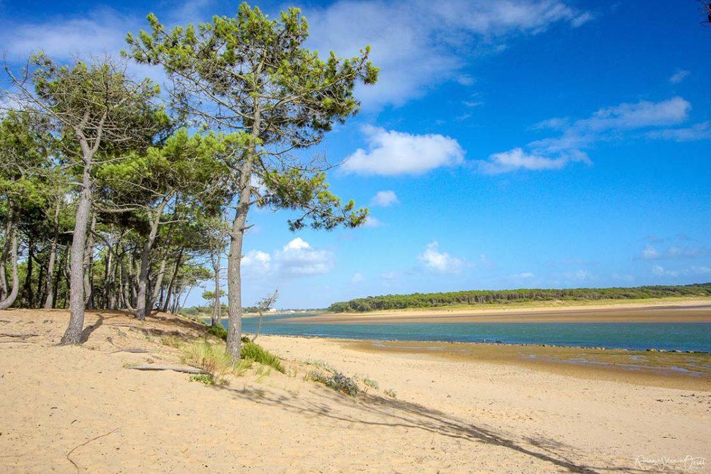 lagune du veillon un des plus beaux sites de vendée