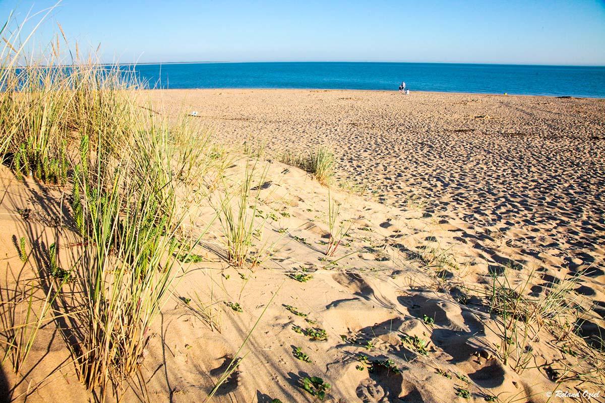 dune et plage proche camping
