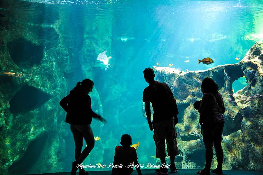 La Rochelle l'aquarium à partir du camping