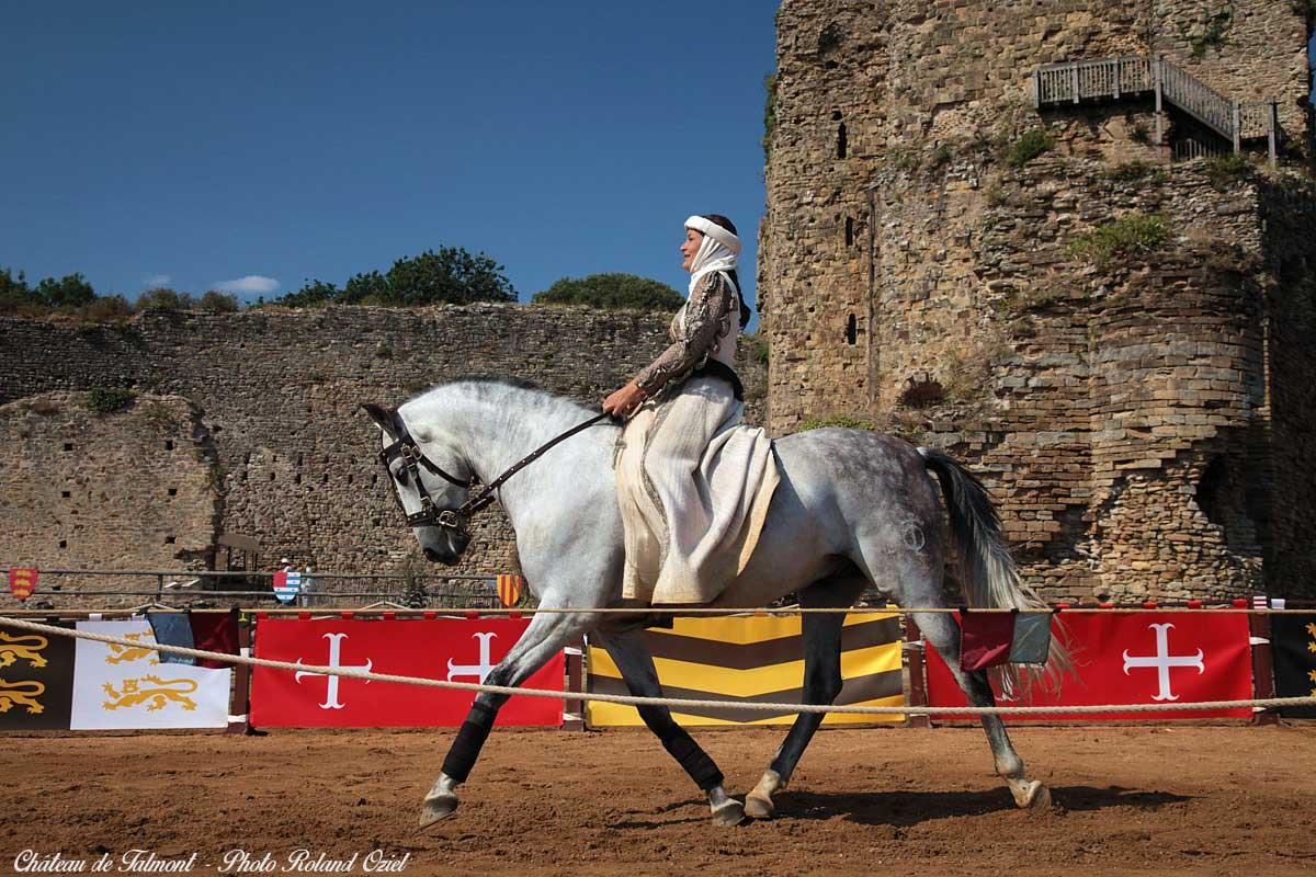 parc de loisirs : le château de Talmont spectacle équestre